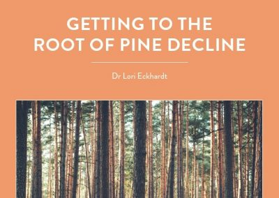 Dr Lori Eckhardt is investigating the cause of a deadly root disease – known as pine decline – in the southeastern United States. Using hyperspectral interferometry […]