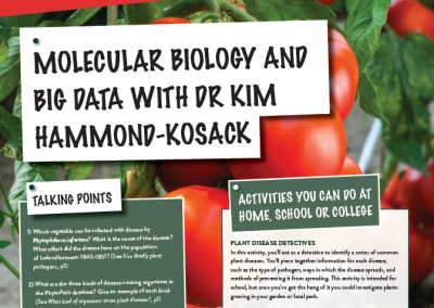 Molecular Biology and Big Data
