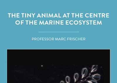 Professor Marc Frischer, from the University of Georgia's Skidaway Institute of Oceanography, is investigating tiny ocean creatures known as doliolids and the food they eat. Why? […]