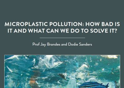 Based at the Skidaway Institute of Oceanography and the University of Georgia Marine Extension in the US, Professor Jay Brandes and Dodie Sanders are […]