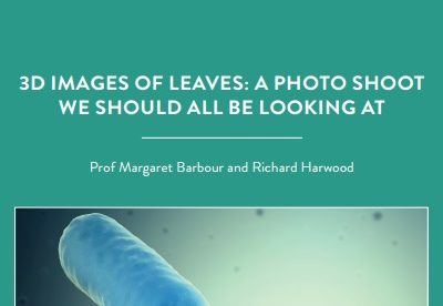 "In our modern age of ""plant blindness"" – where people underappreciate the plants around us – Professor Margaret Barbour and her PhD student, Richard[…]"