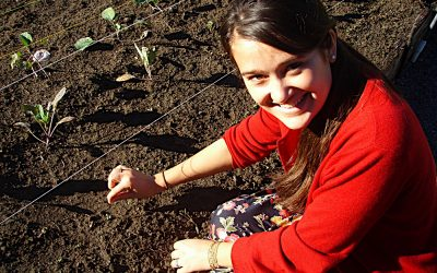 16 free food education activities for World Food Day 2020-21