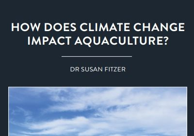 One significant effect of climate change is that the ocean is becoming increasingly acidic. This has implications for marine life […]