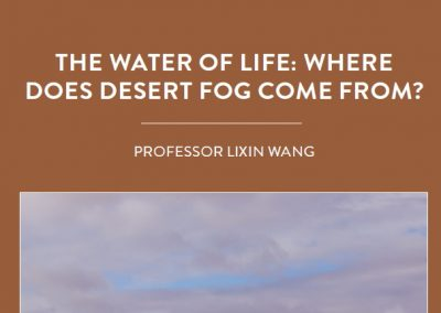 The lack of rainfall in desert environments means that many plants and animals rely on fog and dew to provide their water. But where does […]